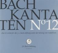 カンタータ集第12集〜第33、70、151番 ルドルフ・ルッツ&バッハ財団管弦楽団