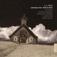 Cantata, 206, 207a: Bernius / Concerto Koln Stuttgart Kammerchor Ziesak M.chance Pregardien