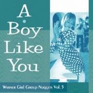 Boy Like You: Warner Girl Group Nuggets Vol.5