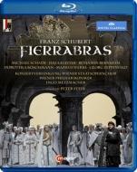 『フィエラブラス』全曲 P.シュタイン演出、メッツマッハー&ウィーン・フィル、シャーデ、クライター、他(2014 ステレオ)(日本語解説付)