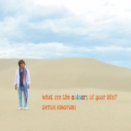 what are the colours of your life?