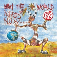 What The World Needs Now (2枚組アナログレコード)