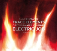 Trace Elements: Live In Teramo