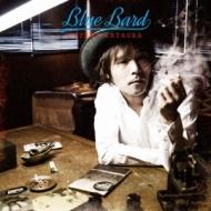 BLUE BARD(仮)