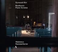 ピアノ・ソナタ第21番『ワルトシュタイン』、第29番『ハンマークラヴィーア』 キム・ソヌク