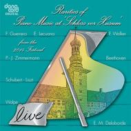 Rarities Of Piano Music At Schloss Vor Husum 2014: J.moog Maltempo 竹ノ内博明 Etc