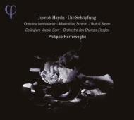 『天地創造』 ヘレヴェッヘ&シャンゼリゼ管弦楽団、コレギウム・ヴォカーレ(2CD)