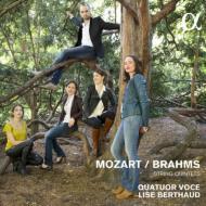 モーツァルト、ブラームス〜弦楽五重奏曲 ヴォーチェ弦楽四重奏団、リズ・ベルトー