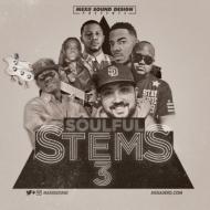 Soulful Stems 3