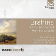 ホルン三重奏曲、ヴァイオリン・ソナタ第1番『雨の歌』、幻想曲集 ズヴァールト、ファウスト、メルニコフ
