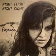 Night Flight Night Sight