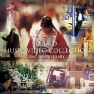 ZARD MUSIC VIDEO COLLECTION 〜25th ANNIVERSARY〜(DVD 5枚組)