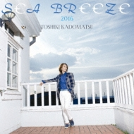 Sea Breeze 2016
