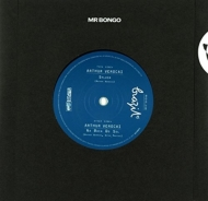 Sylvia / Na Boca Do Sol (7インチシングルレコード)