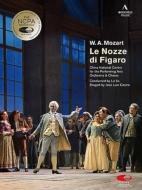 Le Nozze Di Figaro: J.l.castro Lu Jia / China National Centre For The Performing Arts