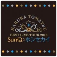 リストバンド / SunQ&ホシセカイ