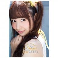 パンフレット / SunQ&ホシセカイ