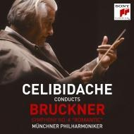交響曲第4番『ロマンティック』 セルジウ・チェリビダッケ&ミュンヘン・フィル(1989年ウィーン・ライヴ)(2CD)