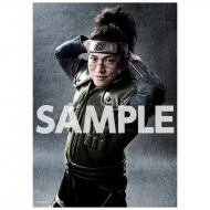 ブロマイド2枚セット(うみのイルカ) / ライブ・スペクタクル「NARUTO-ナルト-」