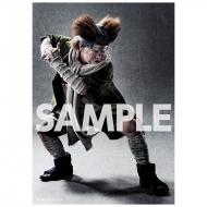 ブロマイド2枚セット(秋道チョウジ) / ライブ・スペクタクル「NARUTO-ナルト-」