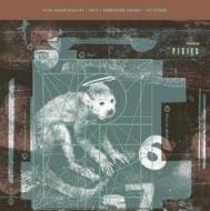 Doolittle (Pure Audio Blu-ray)
