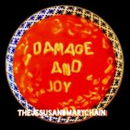 Damage & Joy (2枚組アナログレコード)