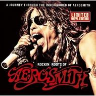 Rockin Roots Of Aerosmith