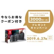 Nintendo Switch Joy-Con(L)/(R)グレー