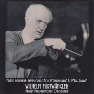 交響曲第8番『未完成』、第9番『グレート』 ヴィルヘルム・フルトヴェングラー&ベルリン・フィル(1953)(平林直哉復刻)