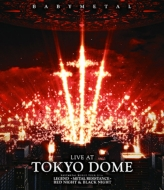 LIVE AT TOKYO DOME 【通常盤】(2DVD)