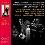 交響曲第4番(室内楽版) クリスティアーネ・カルク、ルノー・カプソン、クレメンス・ハーゲン、アルブレヒト・マイヤー、ヘルベルト・シュフ、他