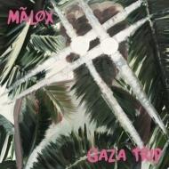 Gaza Trip
