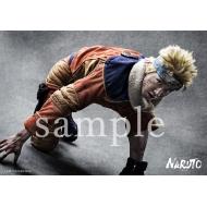 ブロマイド 2枚セット(うずまきナルト 松岡Ver.)/ ライブ・スペクタクル「NARUTO-ナルト-」ワールドツアー