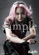 ブロマイド 2枚セット(春野サクラ)/ ライブ・スペクタクル「NARUTO-ナルト-」ワールドツアー