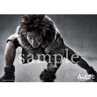 ブロマイド 2枚セット(犬塚キバ)/ ライブ・スペクタクル「NARUTO-ナルト-」ワールドツアー