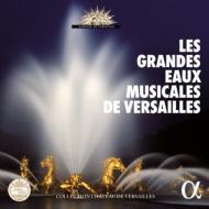 ヴェルサイユの庭園、水の饗宴〜ルイ王朝と三つの世紀 享楽・祈り・そして… ル・ポエム・アルモニーク 他