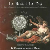 La Rosa E La Dea: Caravella / Il Cantiere Delle Muse