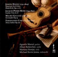 Chamber Works With Guitar: Maruri(G)Beikircher(Vn)Horejsi(Va)M.k.jones(Vc)