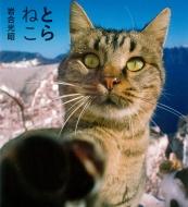 とらねこ IWAGO'S BOOK