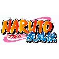 NARUTO−ナルト− 疾風伝 Nostalgic Days