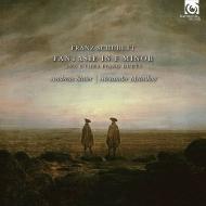 ピアノ連弾作品集 アンドレアス・シュタイアー、アレクサンドル・メルニコフ(フォルテピアノ)