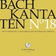 カンタータ集第18集〜第61、116、125番 ルドルフ・ルッツ&バッハ財団管弦楽団