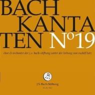 カンタータ集第19集〜第48、90、131番 ルドルフ・ルッツ&バッハ財団管弦楽団