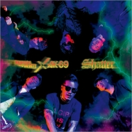 Shatter (+DVD)