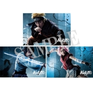 ポストカードセット(全17枚入) / ライブ・スペクタクル「NARUTO-ナルト-」〜暁の調べ〜