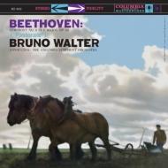 交響曲第6番「田園」:ブルーノ・ワルター指揮&コロンビア交響楽団 (1958) (高音質盤/45回転/2枚組/200グラム重量盤レコード/Analogue Productions/*CL)