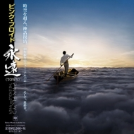 Endless River: 永遠 (TOWA)【紙ジャケット仕様/完全生産限定盤】