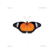 Age Of Love (Incl.Solomun / Jam & Spoon Remixes) (12インチシングルレコード)
