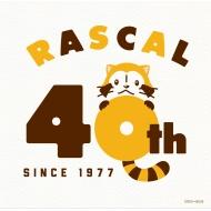あらいぐまラスカル 40th Anniversary BEST