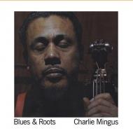 Blues & Roots (180グラム重量盤レコード/DOL)